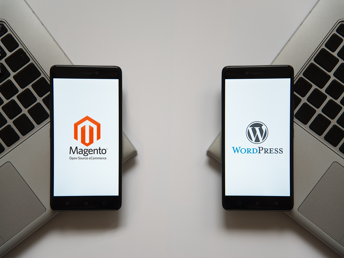 Magento vs WordPress for Your Ecommerce Site